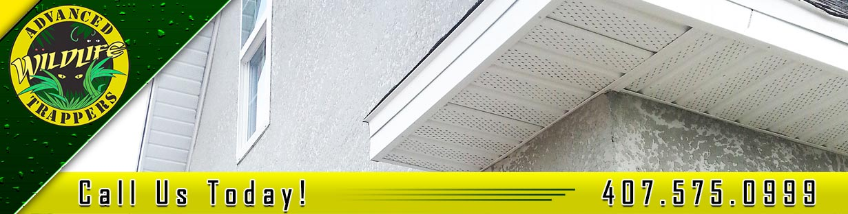 Soffit Repair and Installation in Orlando and Central Florida